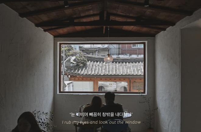 Bộ ảnh xem xong trào dâng thương nhớ Seoul: Đã đến mùa nơi này đẹp nhất, nhưng năm nay ta không thể gặp nhau - Ảnh 6.