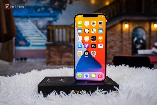 Đẳng cấp của sự chanh sả, mê mẩn chiếc iPhone 12 Pro Max được nạm vàng 18K và kim cương cực ấn tượng - ảnh 7