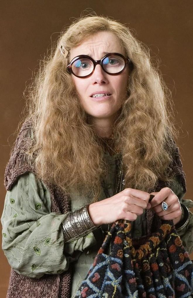 """Drama tình ái ít người biết ở Harry Potter: Đôi """"giáo sư"""" từng là vợ chồng ngoài đời thật, đổ vỡ liểng xiểng vì tiểu tam siêu nổi tiếng - Ảnh 1."""