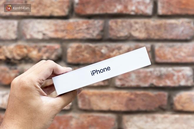 Trải nghiệm iPhone 12 Mini: Nhỏ gọn, lọt thỏm trong lòng bàn tay! - ảnh 8