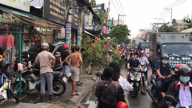 TP.HCM: Ô tô t.ông nhiều xe máy nằm la liệt, làm g.ãy cây xanh và khiến cửa hàng bị hư hỏng - Ảnh 2.