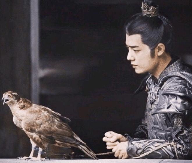 Lang Điện Hạ vướng phốt mang chim quý hiếm thuộc diện sách đỏ đi đóng phim - ảnh 5