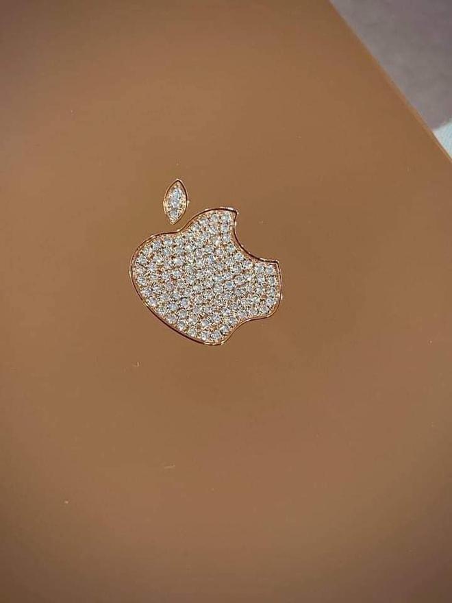 """Đẳng cấp của sự """"chanh sả"""", mê mẩn chiếc iPhone 12 Pro Max được nạm vàng 18K và kim cương cực ấn tượng - Ảnh 5."""