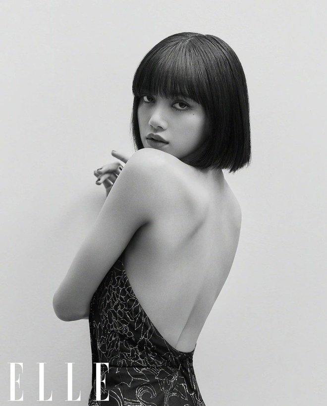 """Fan Lisa - Đường Yên đại chiến: Tranh cãi việc búp bê Thái """"cướp ngôi"""" của đàn chị trên tạp chí thời trang? - Ảnh 3."""