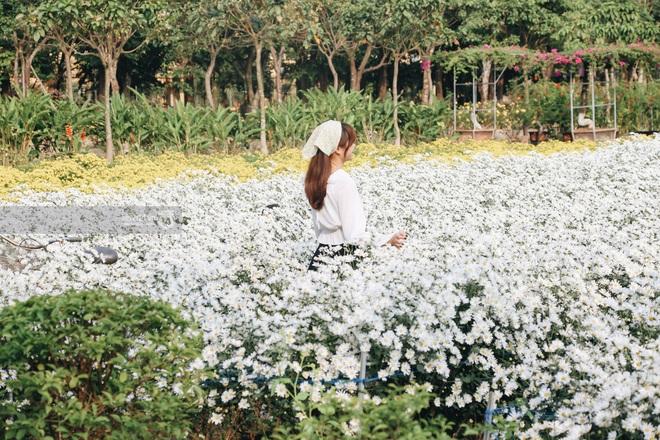 Trường ĐH rộng gần 200 ha có vườn hoa đẹp nhất mùa đông Hà Nội, nhiều góc sống ảo cực chill chỉ với 25K - ảnh 3