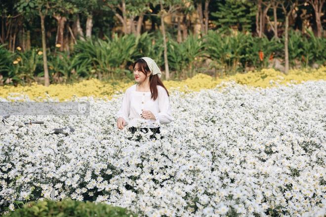 Trường ĐH rộng gần 200 ha có vườn hoa đẹp nhất mùa đông Hà Nội, nhiều góc sống ảo cực chill chỉ với 25K - ảnh 2