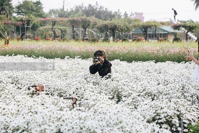 Trường ĐH rộng gần 200 ha có vườn hoa đẹp nhất mùa đông Hà Nội, nhiều góc sống ảo cực chill chỉ với 25K - ảnh 6