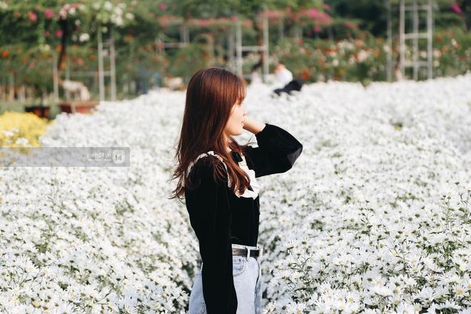 Trường ĐH rộng gần 200 ha có vườn hoa đẹp nhất mùa đông Hà Nội, nhiều góc sống ảo cực chill chỉ với 25K - ảnh 12