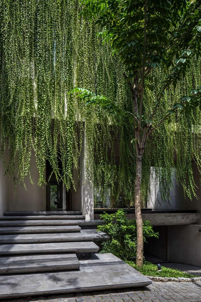 Mất 4 năm hoàn thiện, căn villa ở Sài Gòn xanh mướt như một khu rừng nhỏ, đi vào bên trong càng mê - Ảnh 5.