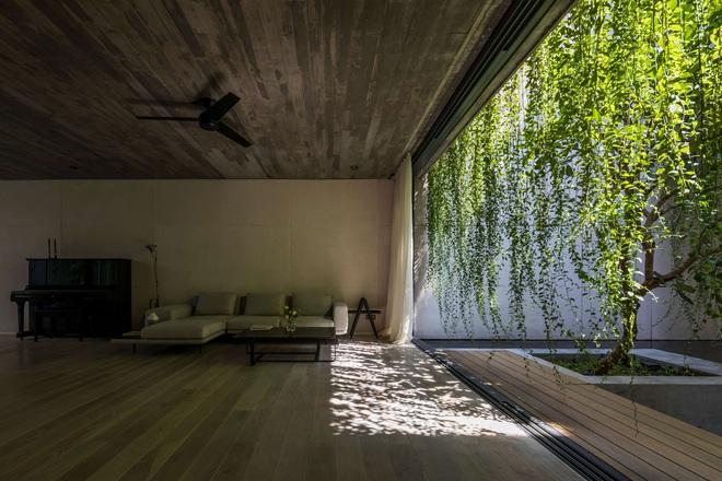 Mất 4 năm hoàn thiện, căn villa ở Sài Gòn xanh mướt như một khu rừng nhỏ, đi vào bên trong càng mê - Ảnh 13.