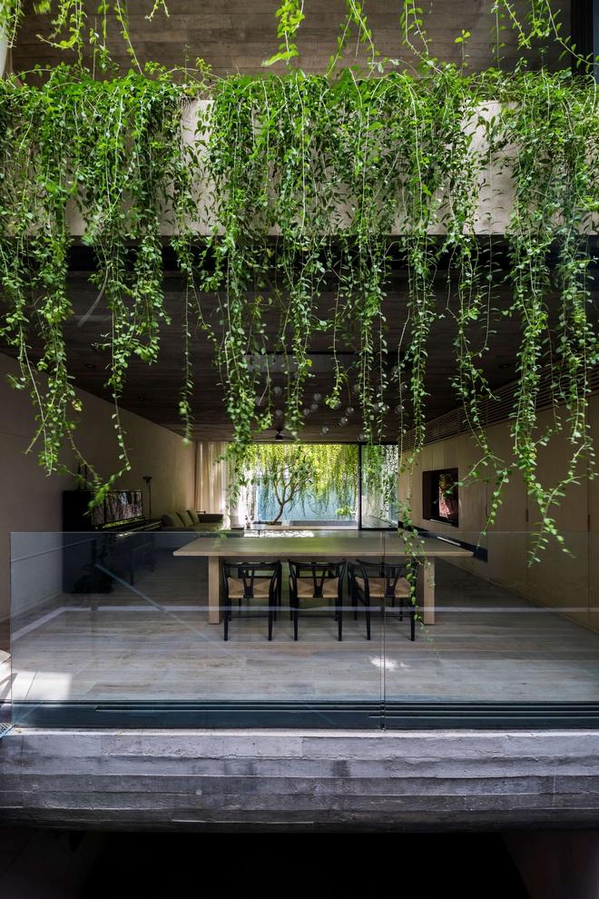 Mất 4 năm hoàn thiện, căn villa ở Sài Gòn xanh mướt như một khu rừng nhỏ, đi vào bên trong càng mê - Ảnh 15.
