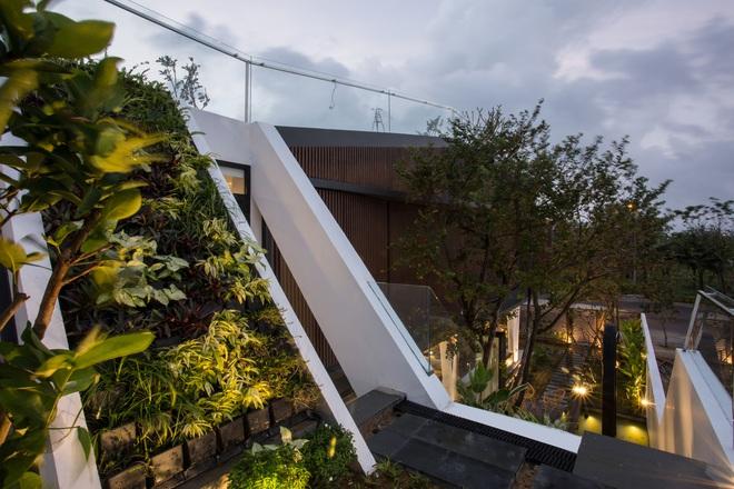 House of One Piece: Ngôi nhà độc đáo và đẹp miễn chê ở Đà Nẵng, nhìn vườn rau trên tầng thượng mà mê - Ảnh 15.