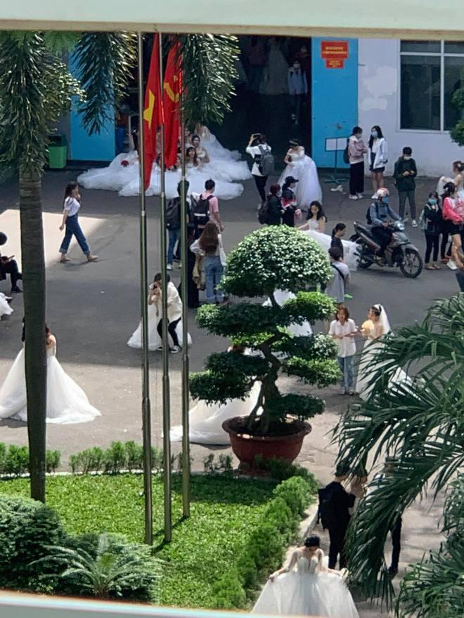 Trường ĐH xuất hiện hàng loạt nữ sinh mặc váy cưới, dân tình rủ nhau lập team đến để được phát cô dâu - Ảnh 3.