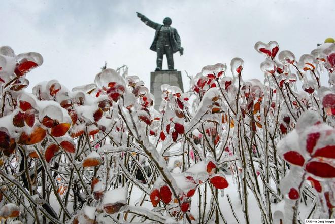 Loạt hình ảnh trong mùa đông khắc nghiệt, băng tuyết trắng xoá ở nước Nga chỉ nhìn thôi cũng đủ thấy rét run cầm cập - Ảnh 7.