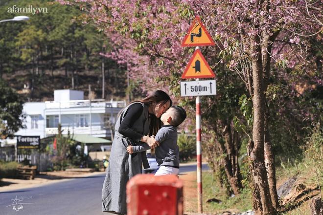 Choáng ngợp với cảnh hàng trăm cây hoa mai anh đào nở rợp trời ở ngôi làng đẹp lạ như Tây Tạng, nằm ngay gần trung tâm TP. Đà Lạt mà không phải ai cũng biết - Ảnh 14.