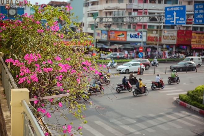 Ngắm nhìn một Sài Gòn bình yên trong ngày cuối năm 2020 - Ảnh 3.