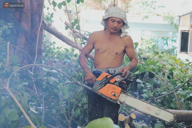 Gặp vua khỉ U50 ở miền Tây: 27 năm thích leo trèo, dù bị ong chích, kiến đốt đến phát sốt vẫn thấy bình thường - ảnh 11