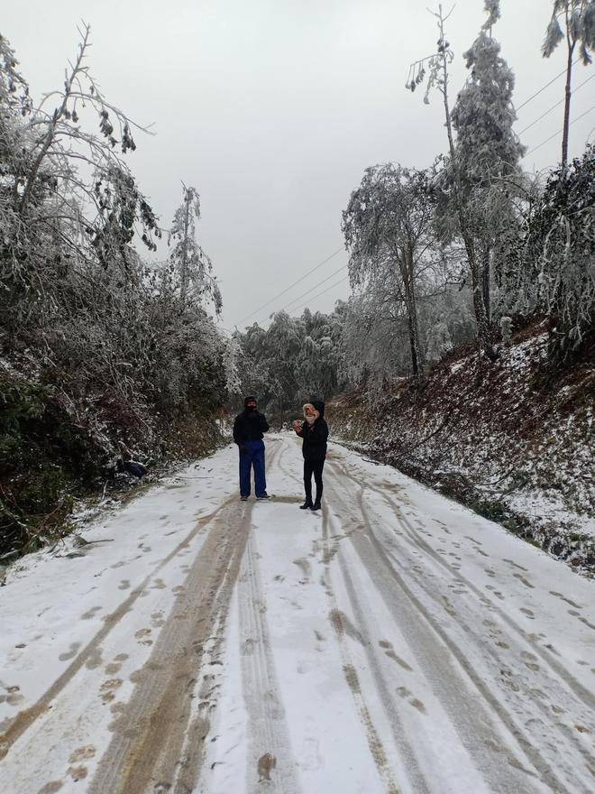 Du khách share loạt ảnh và clip Sa Pa có tuyết rơi, từ sáng sớm nay đã trắng trời - Ảnh 4.