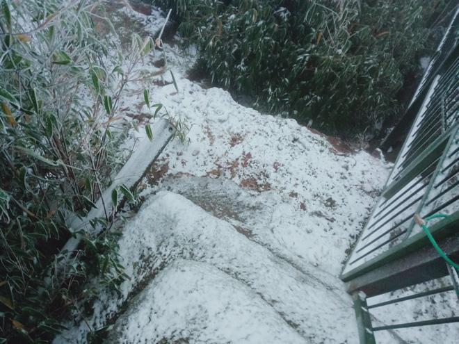 Du khách share loạt ảnh và clip Sa Pa có tuyết rơi, từ sáng sớm nay đã trắng trời - Ảnh 6.