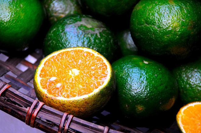 Mua cam nhớ chú ý tới 3 dấu hiệu đặc trưng để chọn được quả vừa ngon vừa mọng nước - ảnh 1
