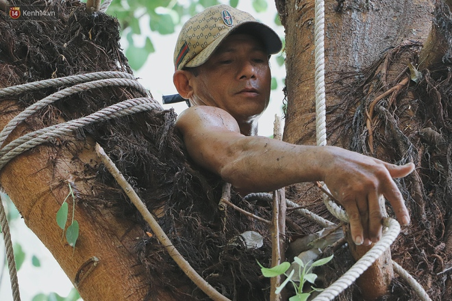Gặp vua khỉ U50 ở miền Tây: 27 năm thích leo trèo, dù bị ong chích, kiến đốt đến phát sốt vẫn thấy bình thường - ảnh 7