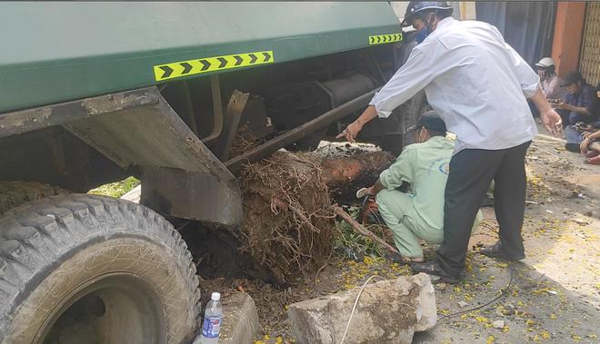 """TP.HCM: Xe rác mất lái, tài xế gào thét """"mọi người tránh ra"""" rồi tông gãy cây xanh mới dừng lại - ảnh 4"""