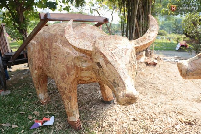 Ảnh: Cận cảnh đàn trâu đồng quê Việt Nam chuẩn bị ra đường hoa Nguyễn Huệ đón Tết Tân Sửu 2021 - ảnh 22