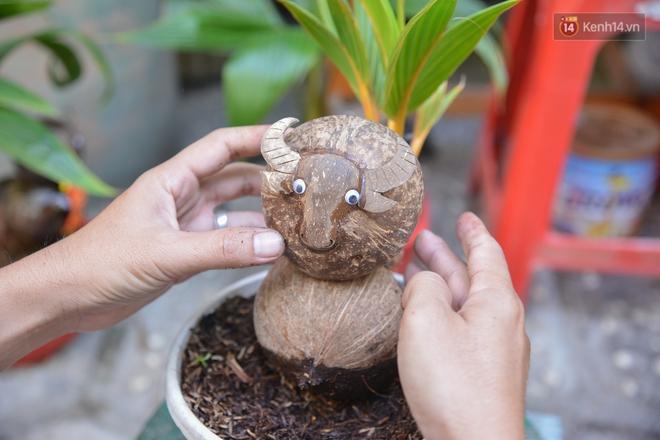 Độc đáo dừa bonsai hình con trâu khiến người Sài Gòn bỏ hàng triệu đồng mua chơi Tết Tân Sửu 2021 - ảnh 4