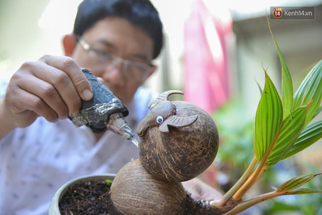Độc đáo dừa bonsai hình con trâu khiến người Sài Gòn bỏ hàng triệu đồng mua chơi Tết Tân Sửu 2021 - ảnh 5