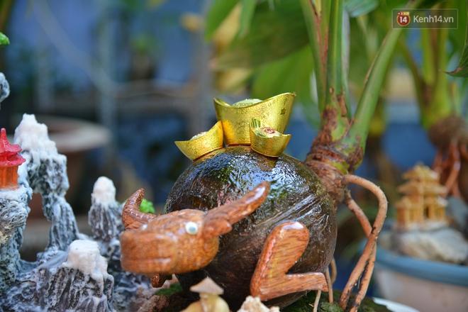 Độc đáo dừa bonsai hình con trâu khiến người Sài Gòn bỏ hàng triệu đồng mua chơi Tết Tân Sửu 2021 - ảnh 12