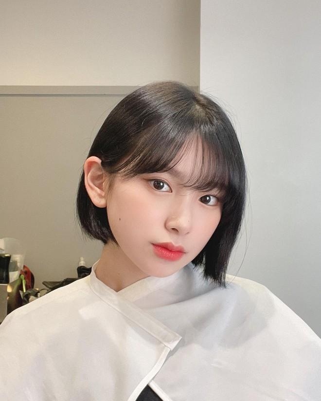 4 kiểu tóc ngắn đang làm mưa làm gió tại các salon Hàn Quốc, diện lên là trẻ xinh hơn hẳn - ảnh 11