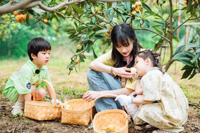 Trịnh Sảng bị netizen chỉ trích giả tạo khi đòi bỏ con mình nhưng lại lên show chăm sóc con nhà người ta - ảnh 1