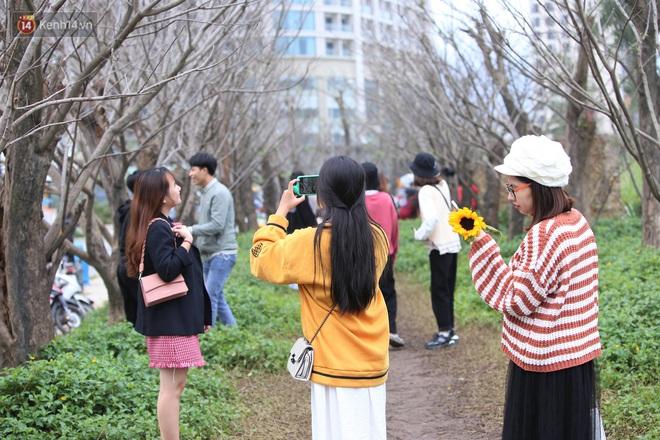 Người dân đổ xô đến check in con đường mùa đông đẹp như trong phim Hàn ở Đà Nẵng - ảnh 15