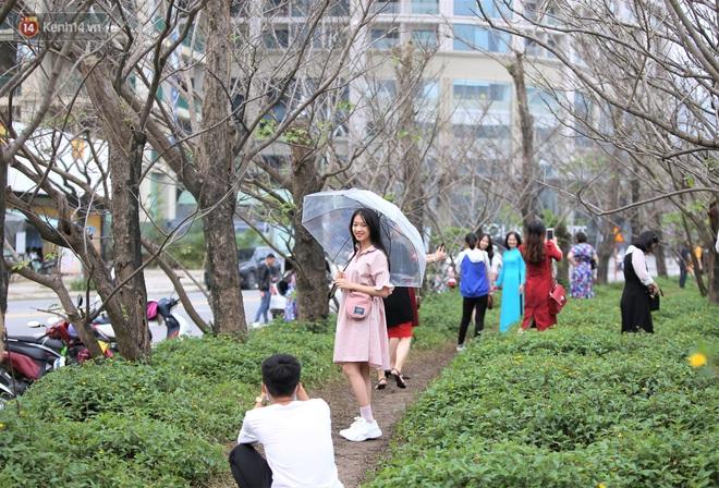 Người dân đổ xô đến check in con đường mùa đông đẹp như trong phim Hàn ở Đà Nẵng - ảnh 2
