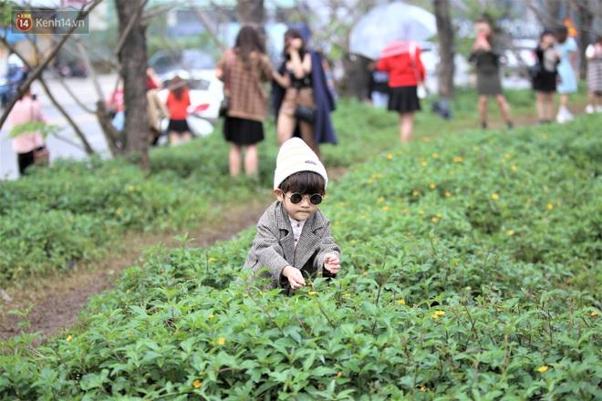 Người dân đổ xô đến check in con đường mùa đông đẹp như trong phim Hàn ở Đà Nẵng - ảnh 8