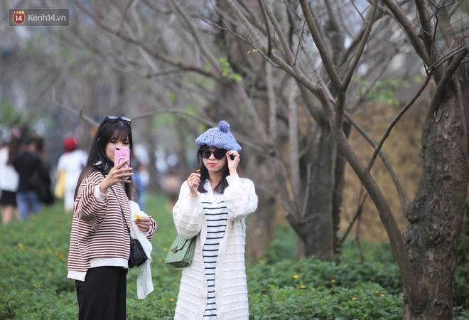Người dân đổ xô đến check in con đường mùa đông đẹp như trong phim Hàn ở Đà Nẵng - ảnh 5