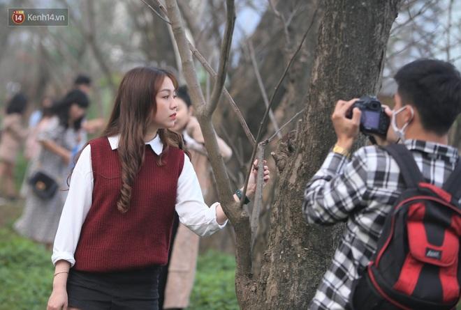 Người dân đổ xô đến check in con đường mùa đông đẹp như trong phim Hàn ở Đà Nẵng - ảnh 7