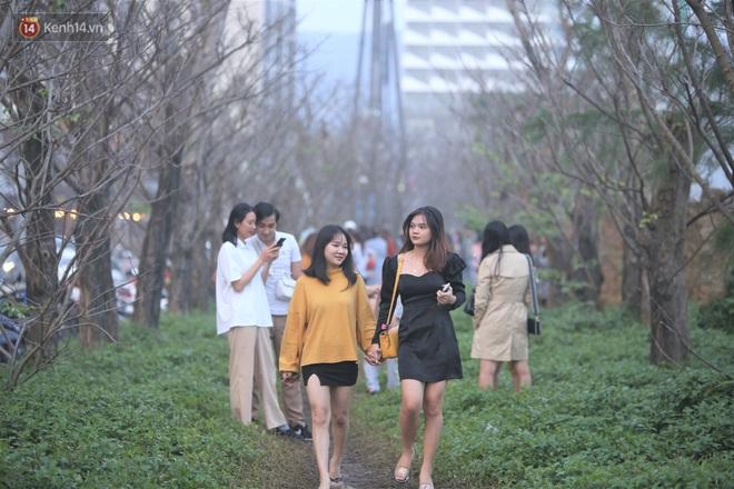 Người dân đổ xô đến check in con đường mùa đông đẹp như trong phim Hàn ở Đà Nẵng - ảnh 14