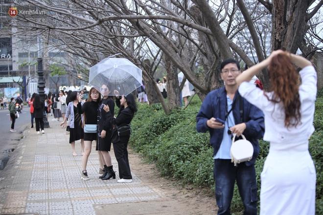 Người dân đổ xô đến check in con đường mùa đông đẹp như trong phim Hàn ở Đà Nẵng - ảnh 12