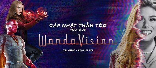 Netizen Việt bùng nổ vì WandaVision tập 8: Cảm động muốn khóc, tình tiết chấn động không thể ngờ! - ảnh 15
