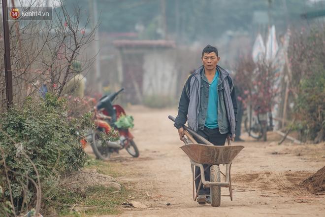 Ảnh: Trời lạnh sương mờ, làng đào Nhật Tân khoe sắc, đúng là Tết đang đến rất gần rồi! - ảnh 7