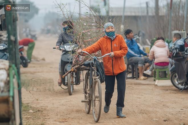 Ảnh: Trời lạnh sương mờ, làng đào Nhật Tân khoe sắc, đúng là Tết đang đến rất gần rồi! - ảnh 11