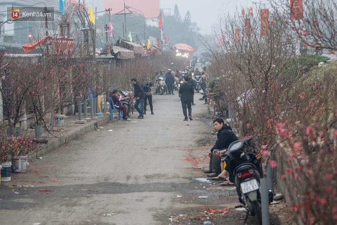 Ảnh: Trời lạnh sương mờ, làng đào Nhật Tân khoe sắc, đúng là Tết đang đến rất gần rồi! - ảnh 13