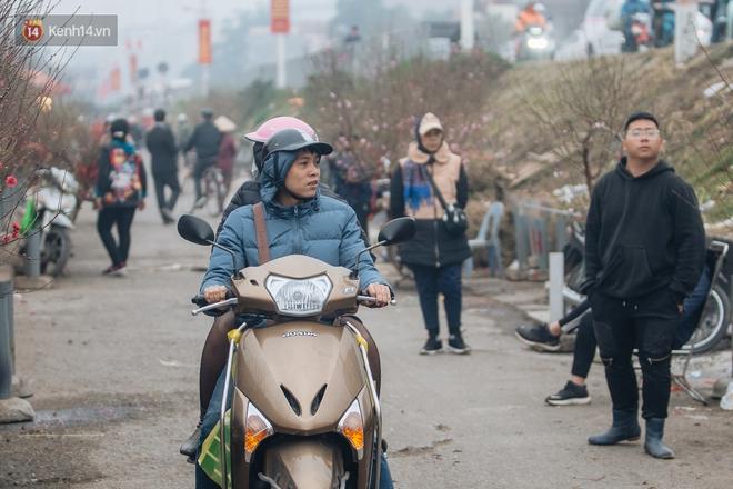 Ảnh: Trời lạnh sương mờ, làng đào Nhật Tân khoe sắc, đúng là Tết đang đến rất gần rồi! - ảnh 15