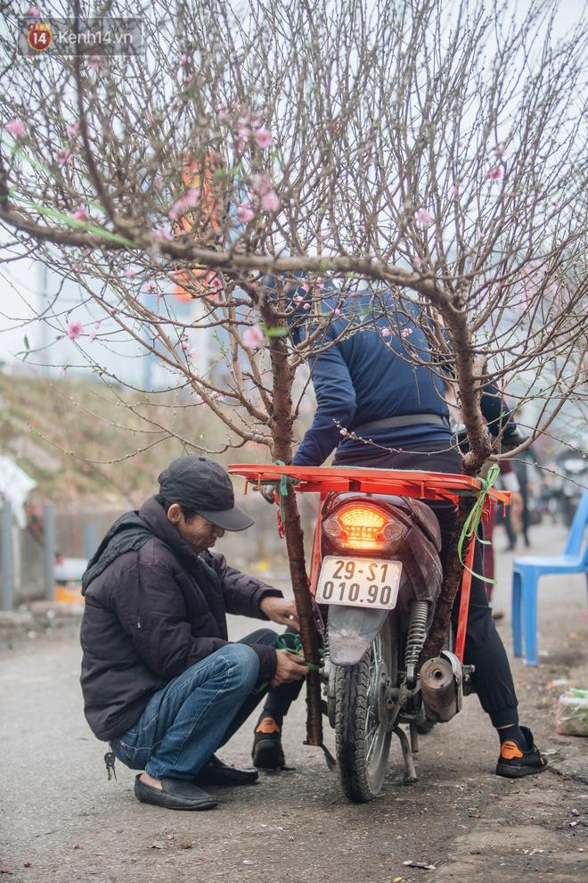 Ảnh: Trời lạnh sương mờ, làng đào Nhật Tân khoe sắc, đúng là Tết đang đến rất gần rồi! - ảnh 16