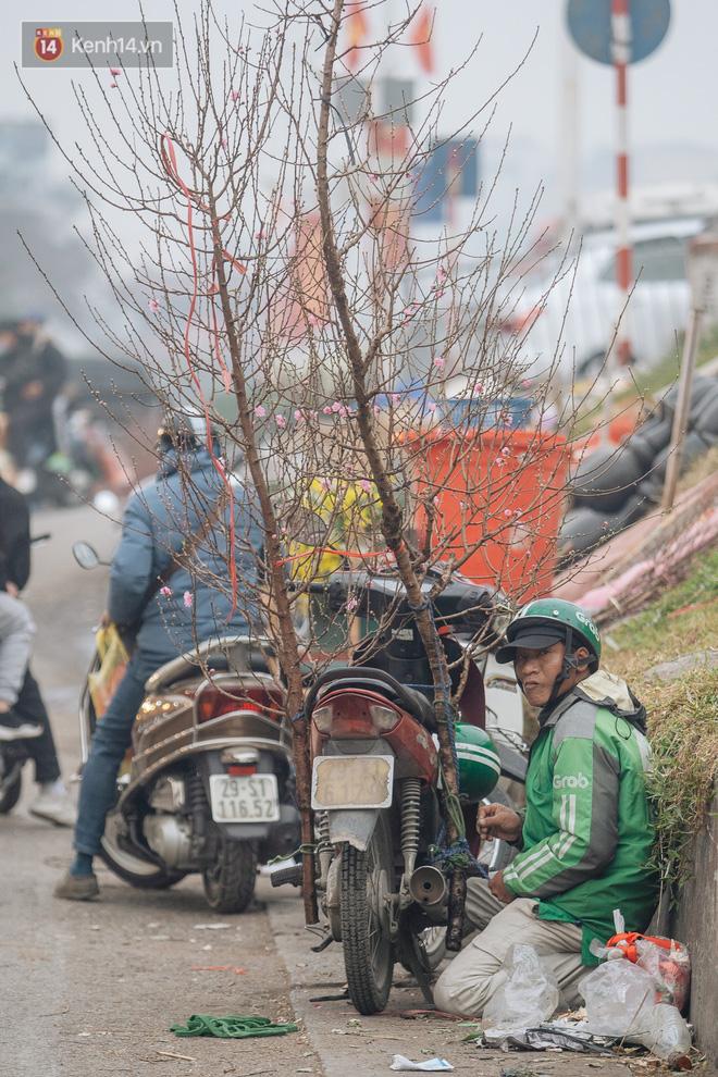 Ảnh: Trời lạnh sương mờ, làng đào Nhật Tân khoe sắc, đúng là Tết đang đến rất gần rồi! - ảnh 17