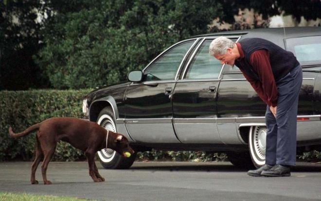 """Những """"đệ nhất thú cưng"""" của các tổng thống Mỹ - ảnh 12"""