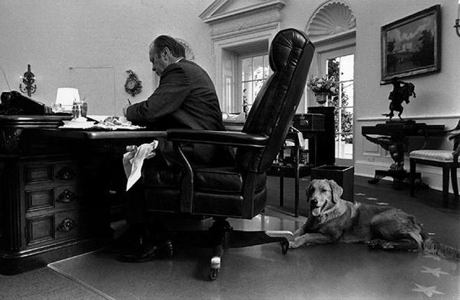 """Những """"đệ nhất thú cưng"""" của các tổng thống Mỹ - ảnh 6"""