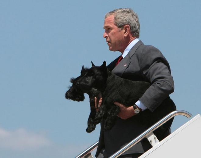 """Những """"đệ nhất thú cưng"""" của các tổng thống Mỹ - ảnh 10"""