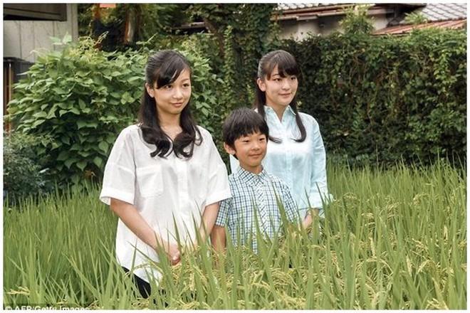 Công chúa Nhật khiến dân chúng buồn lòng vì cưới thường dân: Từng là viên ngọc quý được yêu mến giờ chỉ thấy gượng cười mỗi lần xuất hiện - ảnh 4